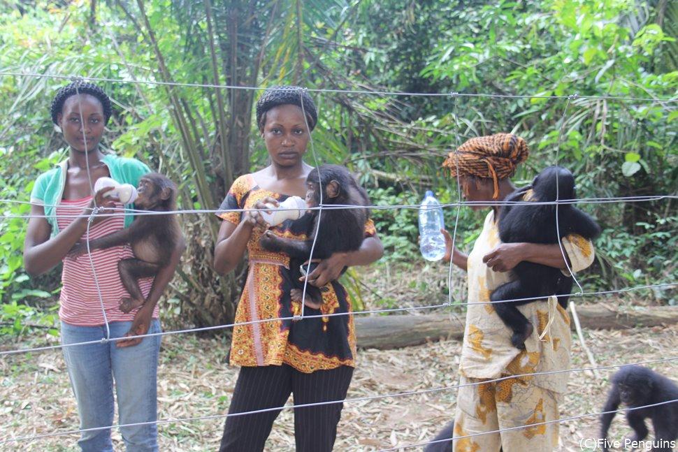 ボノボ孤児院の保育園