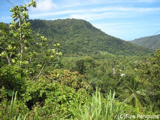 島中が緑であふれる自然の島