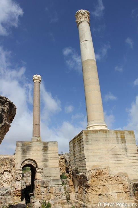 チュニジアのカルタゴ遺跡。当時の繁栄が分かります。