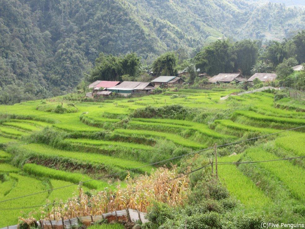 長閑な風景の広がるシンチャイ村(サパ)