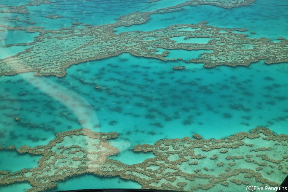 グレートバリアリーフの美しすぎる海!