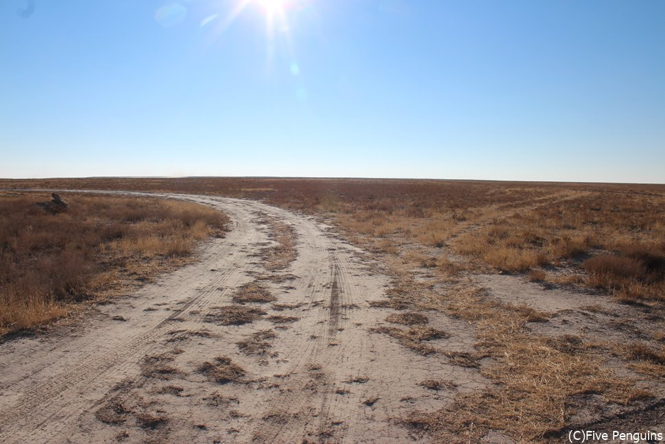 アラル海の水を求めてひたすら凸凹道を進む