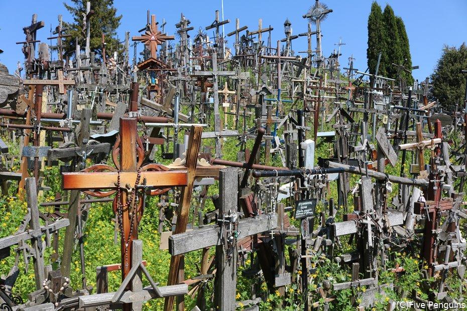 大小さまざまな十字架が並ぶ姿は圧巻!