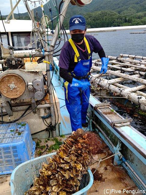 漁師さんが機材を積んだボートで案内してくれる