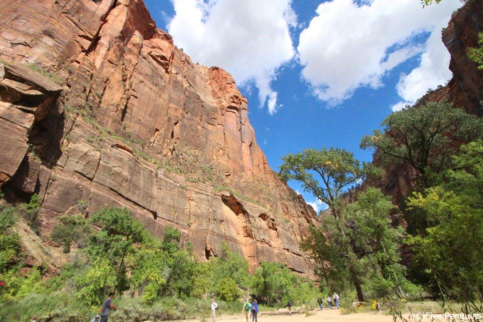 ザイオン国立公園のトレイルはその岩の大きさに圧倒されます
