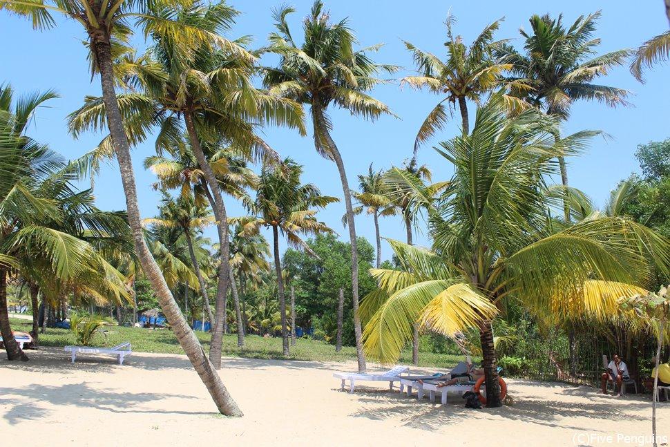 南インドは年間を通して気温が高く海のリゾートも楽しめます