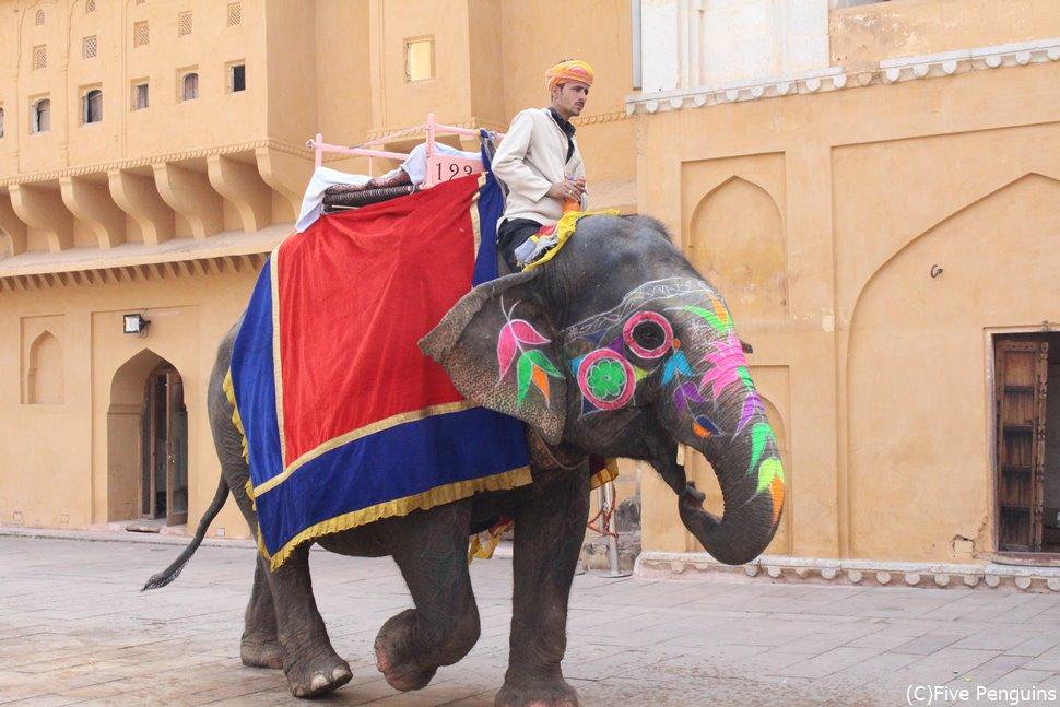 アンバー城まで乗れる象のタクシー。