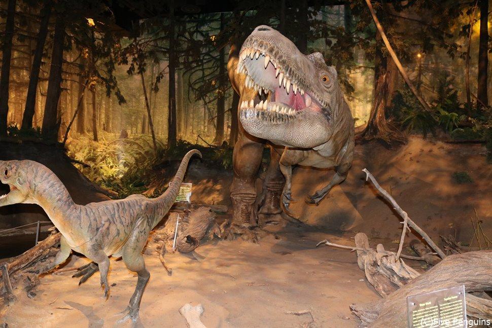 ロイヤルティレル博物館 ティラノサウルスがお出迎え<ドラムヘラー>