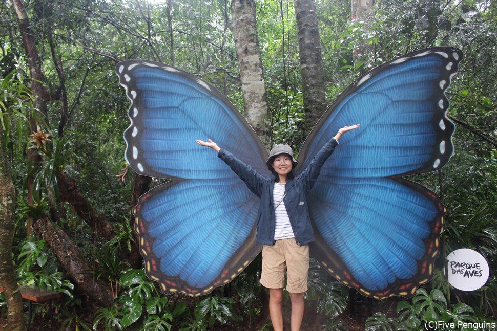 イグアス滝の入り口近くにあるバードパークにて蝶になってみる