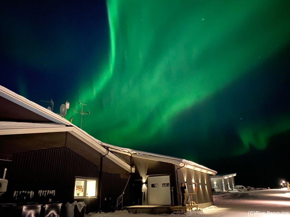このオーロラを見るためにスウェーデンに来たと言っても過言ではありません