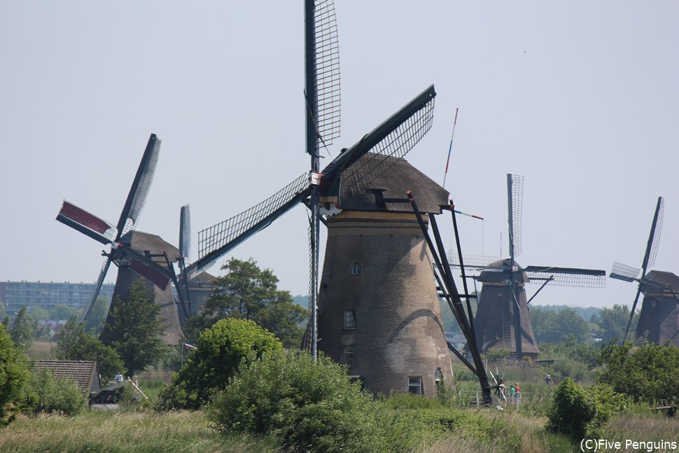 世界遺産のキンデルダイクの風車群