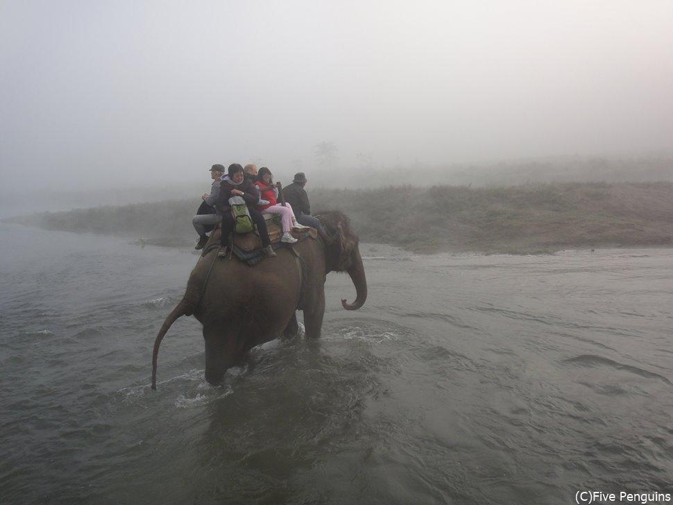 エレファントサファリで川を渡る<チトワン国立公園>