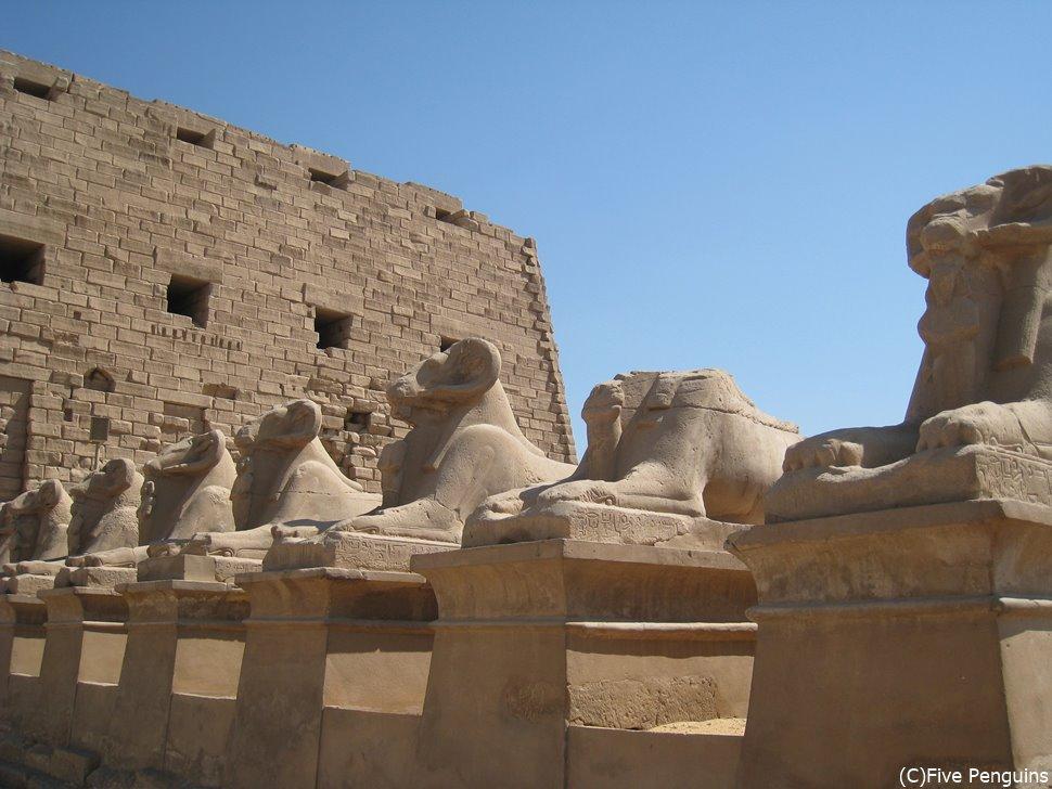 カルナック神殿にずらりと並ぶスフィンクス達