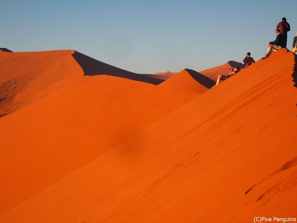 一生で一度は訪れてみたい絶景 ナミブ砂漠(ナミビア)