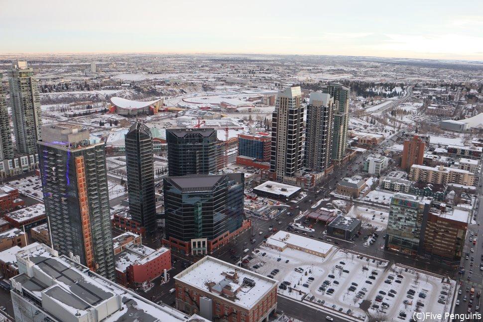 カルガリータワーから眺める冬の景色