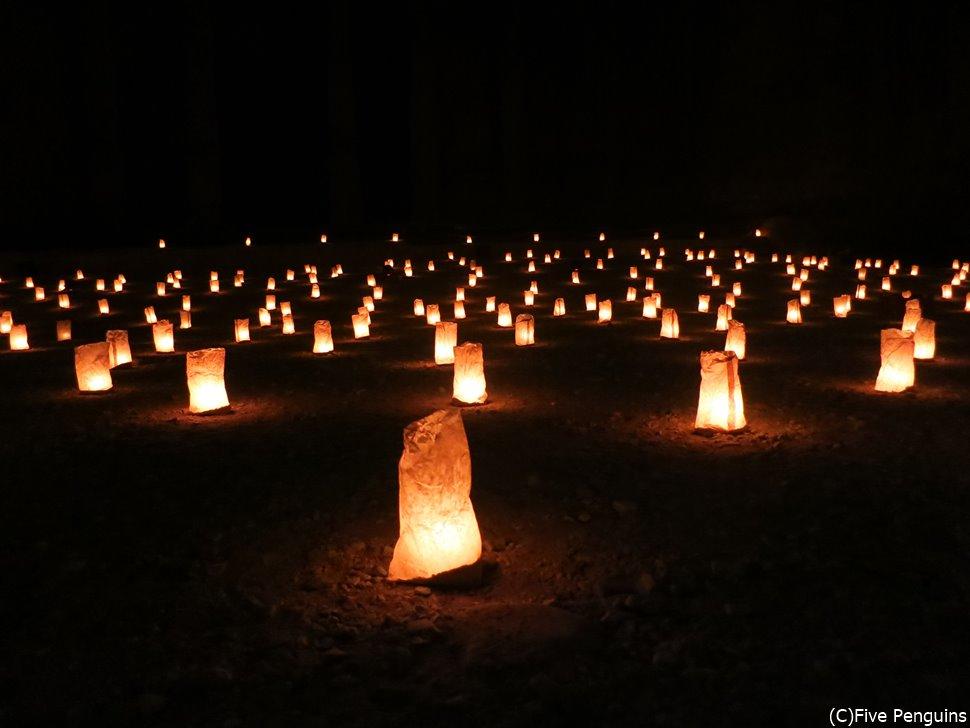 タイのロイクラトン祭りみたい?実はここヨルダンなんです。