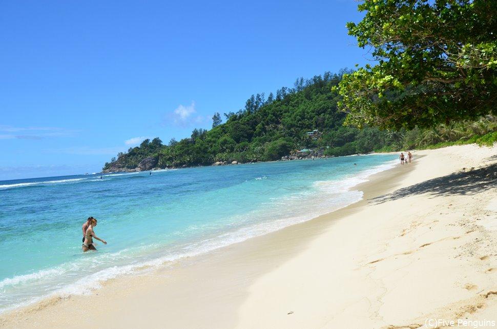 手つかずの自然が残るマヘ島のビーチ