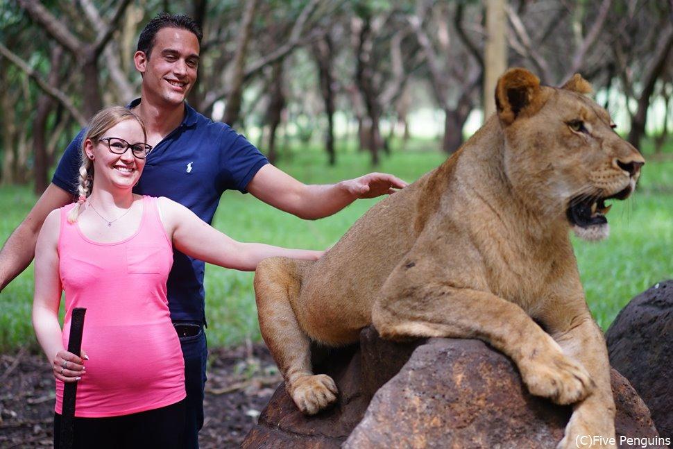 カゼラ・ワールド・オブ・アドベンチャーズでライオンとお散歩