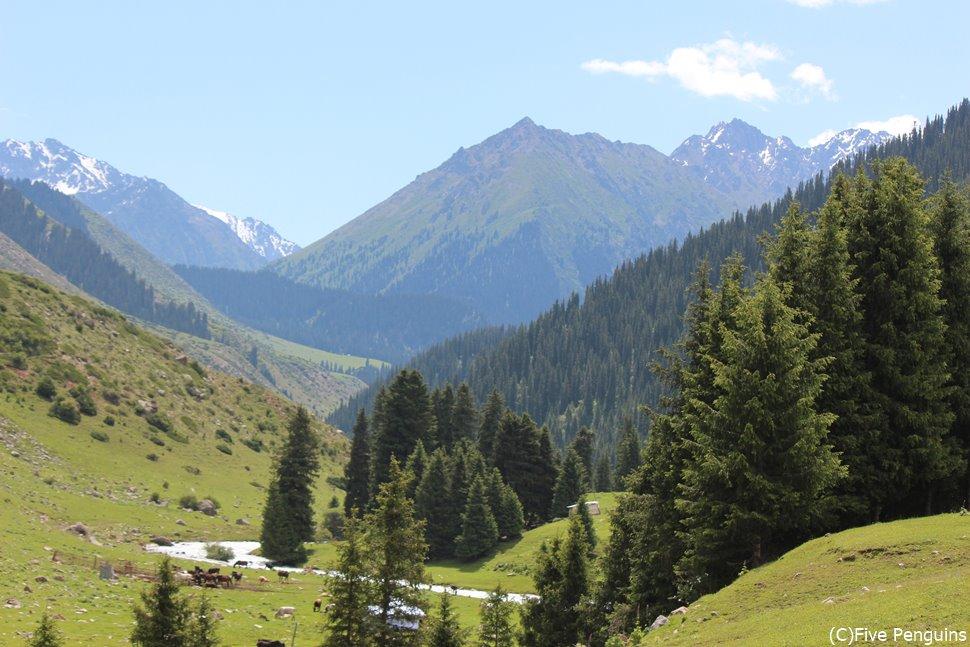 山あいにはこんなきれいな渓谷も「ジェテイ・オグズ渓谷」