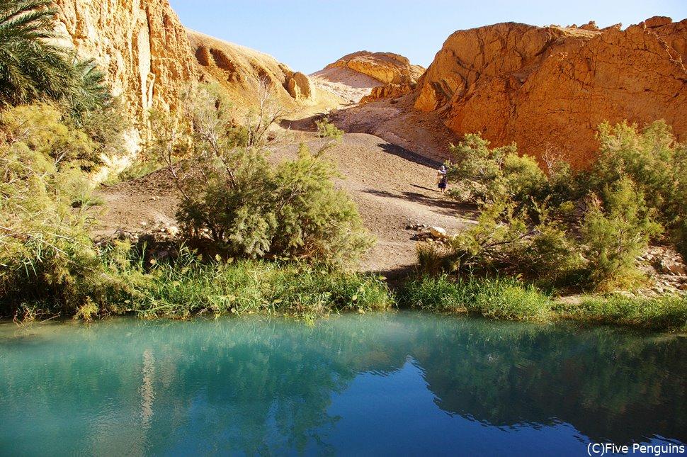 山岳オアシスの村シェビカ(タメルザ峡谷)