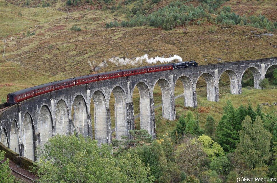 こんなに自然とマッチしている列車は見たことない!