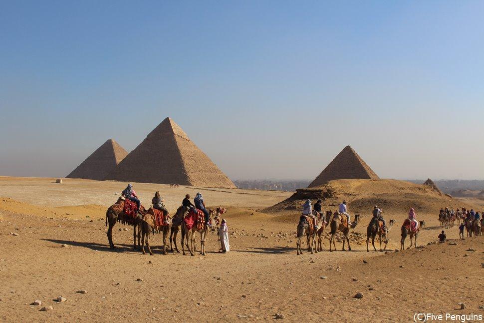 ギザの3大ピラミッドとラクダ