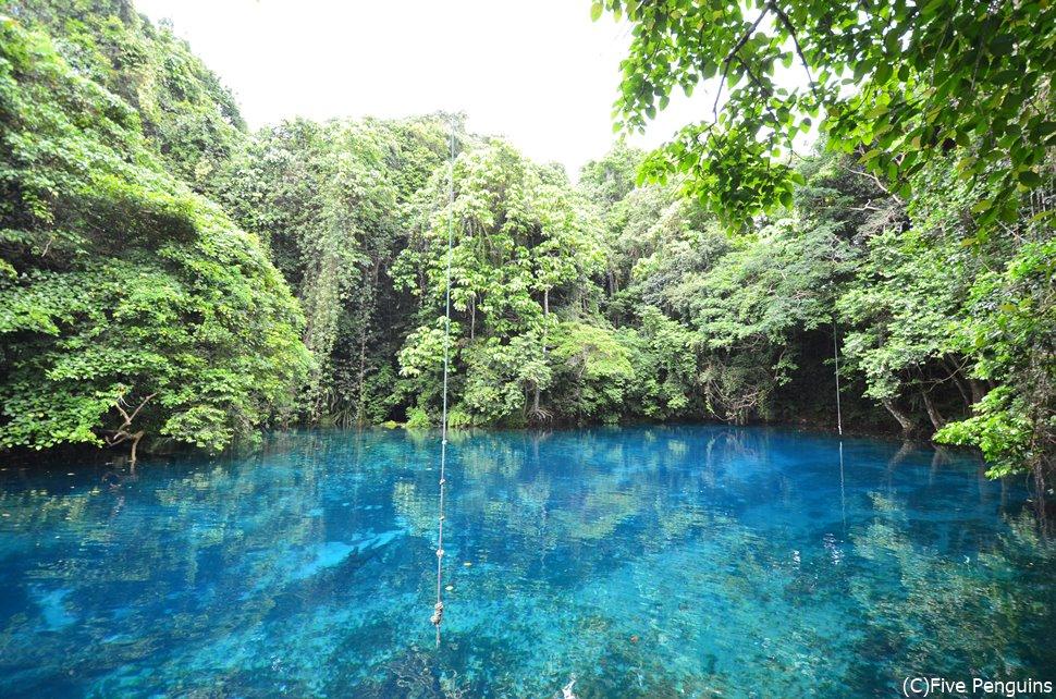 ジャングルに囲まれた神秘的なリリ・ブルーホール