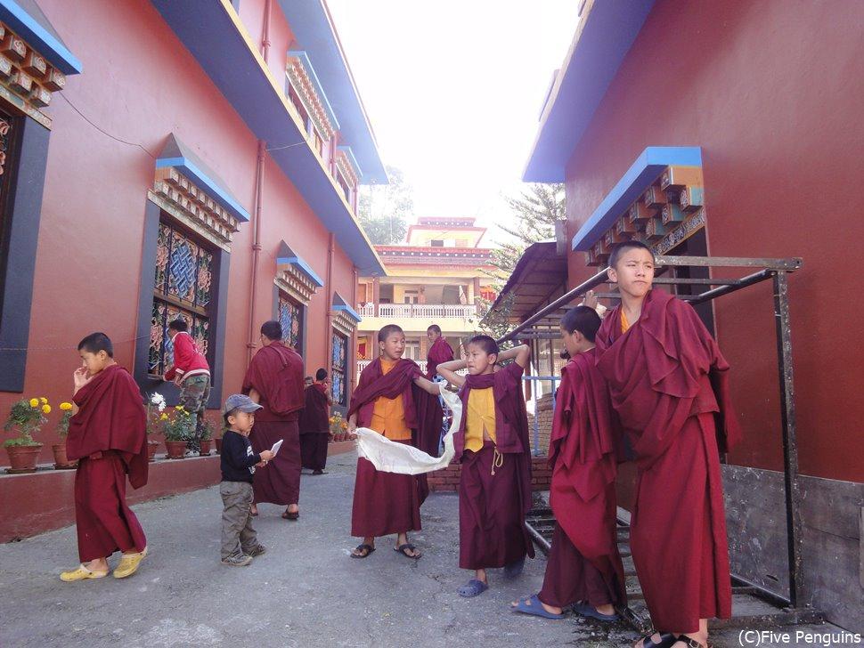 チベット難民キャンプの寺院にて<ポカラ>